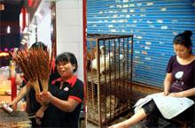 Suzhou's Night Markets - A Taste of Life!